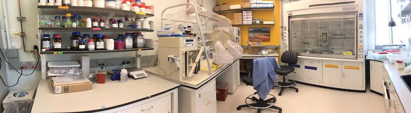 Overview of the Microbial Culturing Lab